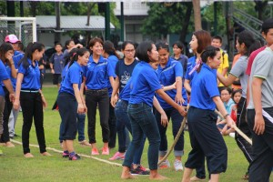 sportday33
